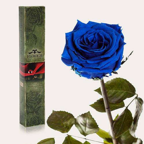 Купить цветы флорич ковер овальной формы рисунк цветы купить